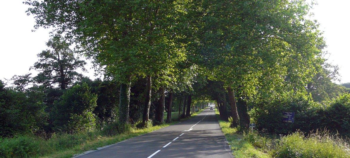 Route de Dun-le-Palestel