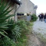 Végétation en bord de route lors de la visite de Champagnat